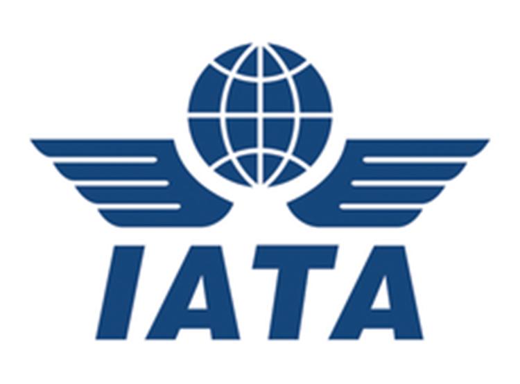 TravelZone es: IATA